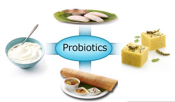 Probiotics có lợi cho hệ tiêu hóa của vật nuôi